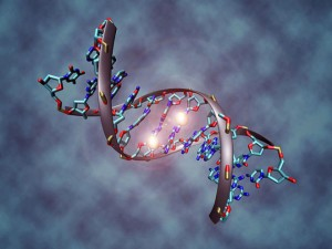 Molécula de ADN. Christoph bockmax planck institute for informatics.